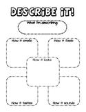 Describe it! Five Senses Graphic Organizer