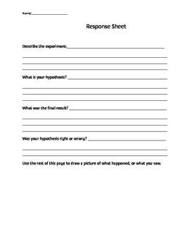 Describe the Experiment Response Sheet