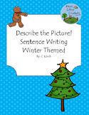 Describe the Picture Sentence Writing Practice - Winter Edition