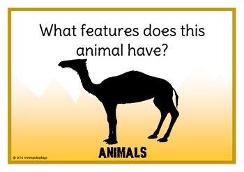 Describe the Zoo Animal