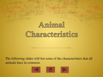 Describing Animals PowerPoint