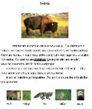 Animals and Their Habitats - Common Core Aligned Full Day For Your Sub