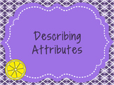 Describing Attributes
