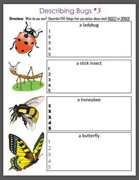 Describing Bugs (Insects and Spiders)