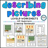 Describing Pictures- WH Questions (autism, special educati