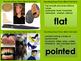 Describing Shape Picture Match Task Cards