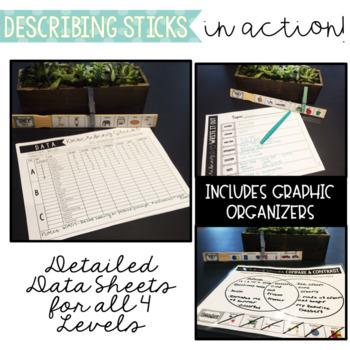 Describing Sticks