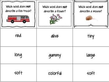Describing {Task Cards}