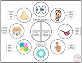 Describing Visual with Examples- Attributes, Compare and Contrast
