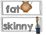 Describing Words Picture Cards