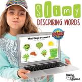Describing Words Speech Therapy Boom Cards