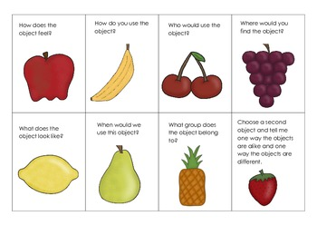 Describing and Defining Fruit Salad Game
