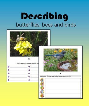 Describing butterflies, bees and birds:  Nature Photos