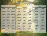 Description word mat for KS2 - The forest
