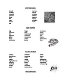 Description words