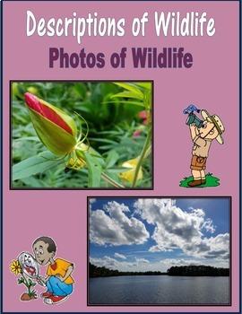 Descriptions of Wildlife (Photos of Wildlife)