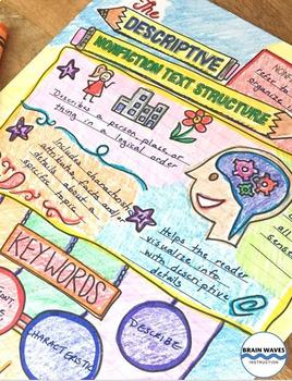 Descriptive Nonfiction Text Structure - Doodle Notes and 6 Lessons / Activities