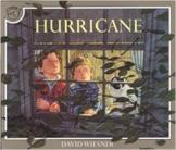 Descriptive Poetry (3 weeks) based on Hurricane by David Wiesner