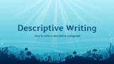 Descriptive Writing (Part 1) - Lesson & Activity
