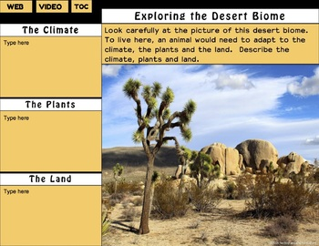 Desert Animal Adaptations Interactive Digital Notebook for Google Drive®