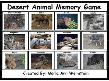 Desert Animal Memory Game
