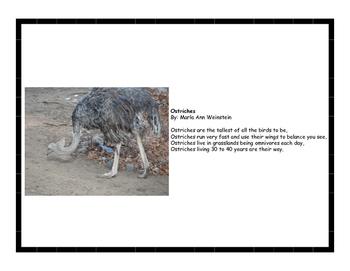 Desert Animal Poetry Pack