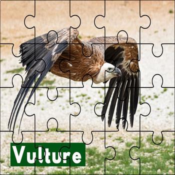 Desert Animal Puzzle Printables