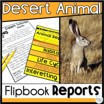 Desert Animals Research Project