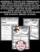 Desert Animals Research Project & Rubric • Teach- Go Pennants™
