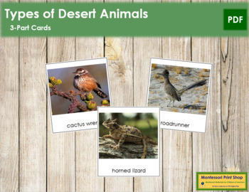 Desert Animals: 3-Part Cards