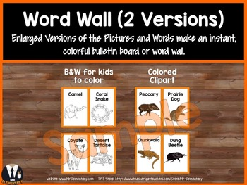Desert Animals Trading Cards and Word Wall Posters