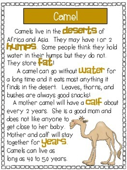 Desert Animals - A First Grade Literacy Center
