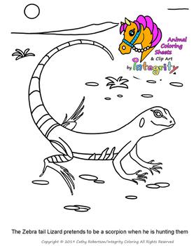 Desert Animals Coloring Pages Vol 2 Sonoran Desert Western Plains