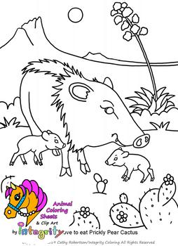 Desert Animals Coloring Pages - Vol. 4 - Sonoran Desert - Western Plains