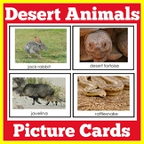 Desert Animals Habitat Activity