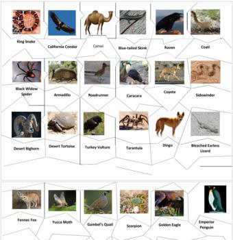 Desert Animals Jigsaw Puzzle