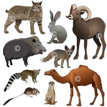 Desert Animals Realistic Clip Art