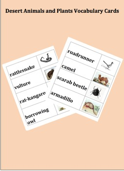Desert Animals and Plants Vocabulary Cards