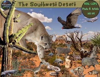 Desert Clip Art Animals & Plants Photo Clip Art Habitats ...