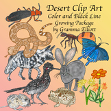 Desert Clip Art - Color & Black Line Semi Realistic Growing Resource 300dpi PNG