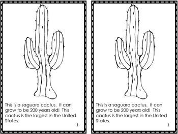 Desert Emergent Reader