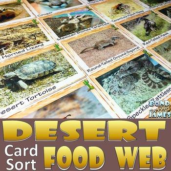 Food Chain and Food Web: Desert Food Card Sort