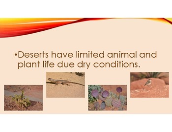Desert Habitat PowerPoint with definitions and pictures of plants and animals.