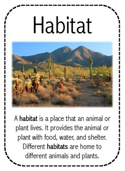 Desert Habitat Read and Draw
