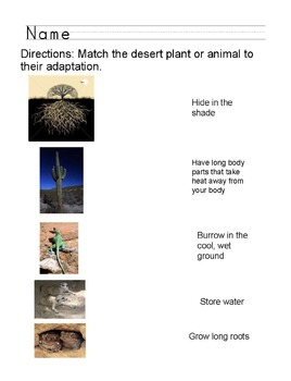 Desert Plant and Animal Adaptations Demonstration of Learning
