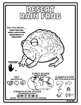Desert Rain Frog -- 10 Resources -- Coloring Pages, Reading & Activities