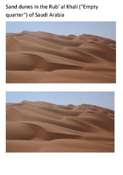 Desert Word Search