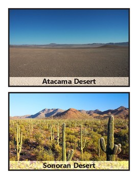 Desert Word Wall Posters