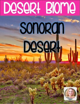 Desert The Sonoran Desert