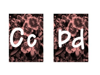 Design Alphabet and Number Cards